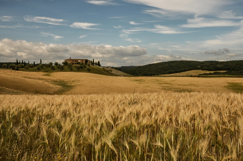 Siena Italy Points Of Interest Tourism What To See