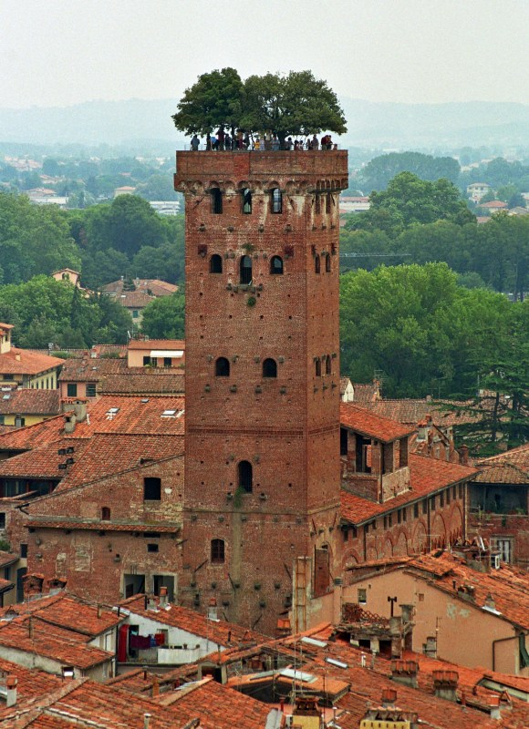 Italian Florence: Pisa And Lucca Day Trip From Florence Tour